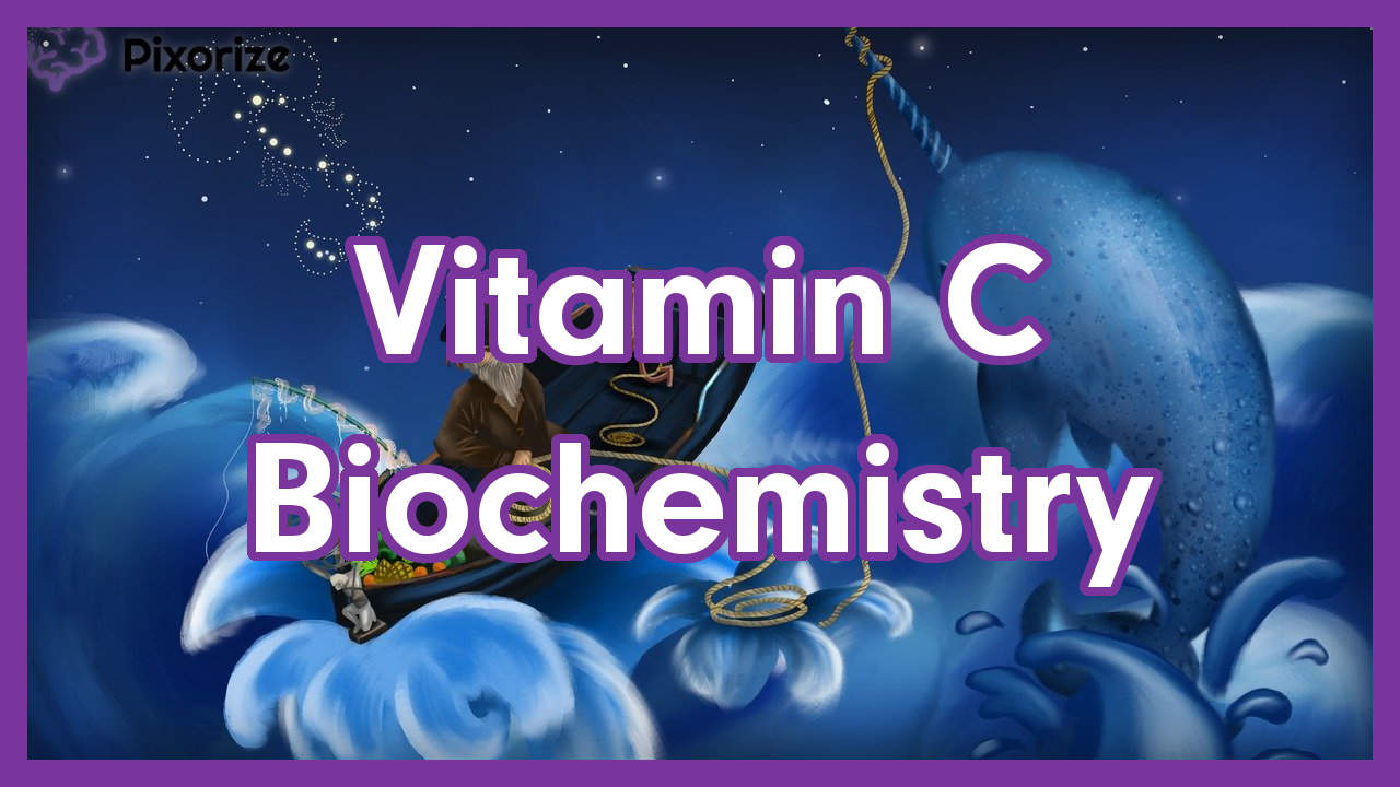 Top Five Vitamin C Deficiency Mnemonic - Circus